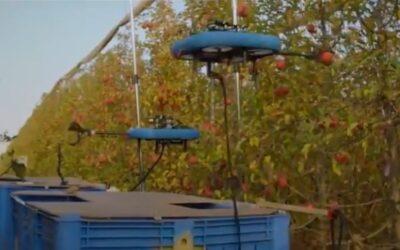 El robot que recolecta fruta