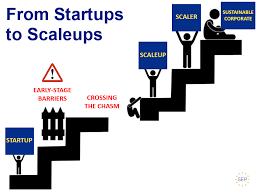 ¿Cuál es la diferencia entre una Startup y una Scale up?