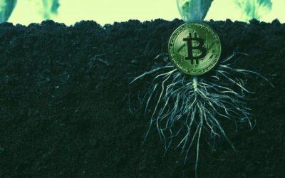 Taproot, la actualización del protocolo de Bitcoin que se activará en noviembre